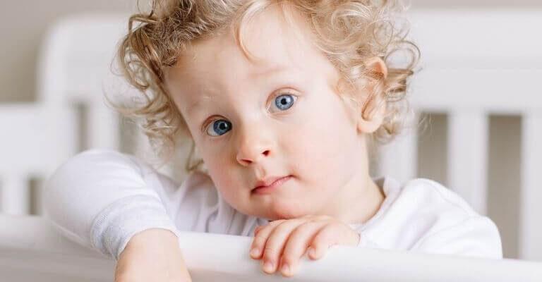 Bettgitter & Rausfallschutz für Kinderbett